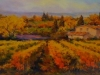 Vigne del vino nobile (Montepulciano)