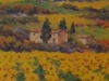 Girasoli in Val di Chiana