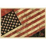Flag - manifesto di Obey disponibile presso la galleria Deodato Arte