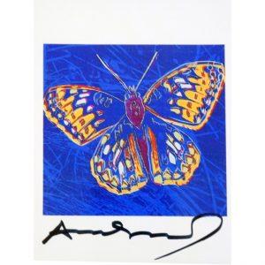 butterflywarhol